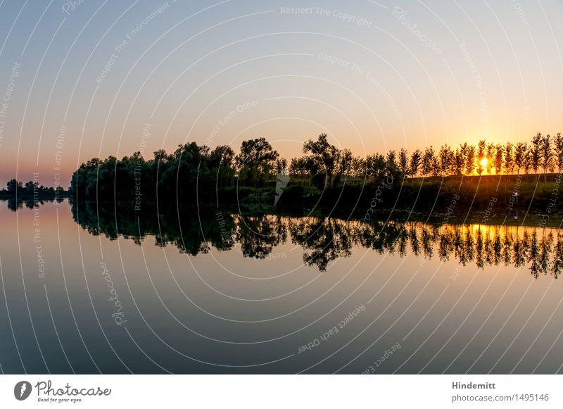 Am Po II Ferien & Urlaub & Reisen Umwelt Natur Landschaft Pflanze Luft Wasser Himmel Wolkenloser Himmel Sommer Schönes Wetter Wärme Baum Wald Flussufer