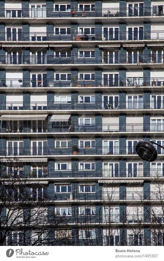 unscheinbares Detail | Suchbild: rote Kiste Lifestyle Städtereise Häusliches Leben Wohnung Sträucher Grünpflanze Paris Hauptstadt Stadtzentrum Haus Hochhaus