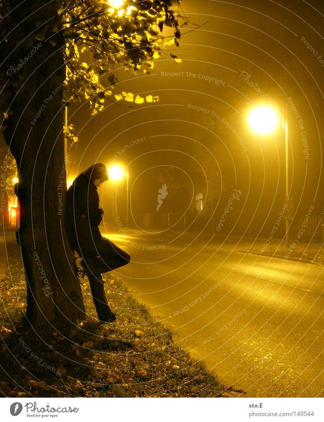 an nebligen tagen Mensch Kerl Körperhaltung stehen Nebel Natur Nacht Abend Straße Asphalt Licht Lampe Laterne gelb Baum Baumstamm Blatt Baumkrone erleuchten