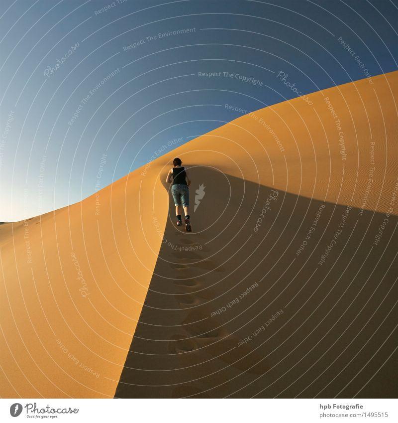 Sanddüne Sahara Natur Ferien & Urlaub & Reisen blau Sommer Sonne Landschaft Ferne gelb Leben Bewegung Sport braun Stimmung Horizont Tourismus Perspektive