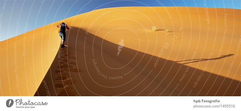 Sanddüne Sahara Mensch Natur Ferien & Urlaub & Reisen blau Sommer Sonne Landschaft Einsamkeit gelb Wärme Bewegung feminin braun Tourismus wandern laufen