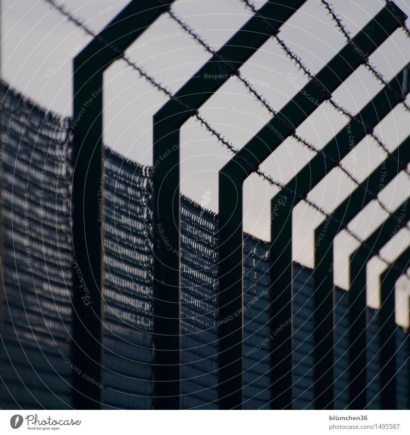 Sicher !?! Stacheldraht Stacheldrahtzaun Barriere Grenze Kontrolle Maschendrahtzaun Grenzgebiet Zaun Metall bedrohlich dunkel Flucht abweisend Sperrzone