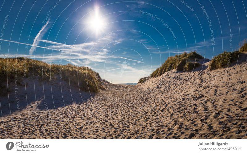 Bergauf Umwelt Natur Landschaft Pflanze Sand Wolken Sonnenlicht Klima Wetter Wüste Blick Stimmung Ferien & Urlaub & Reisen Erholung Kur Freiheit abgelegen