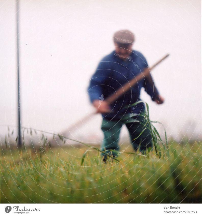 landarbeit Mann grün Senior Gras Feld Arbeit & Erwerbstätigkeit analog Amerika Handwerk Halm Bewegungsunschärfe Futter Mittelformat Filmmaterial Börde Rollfilm