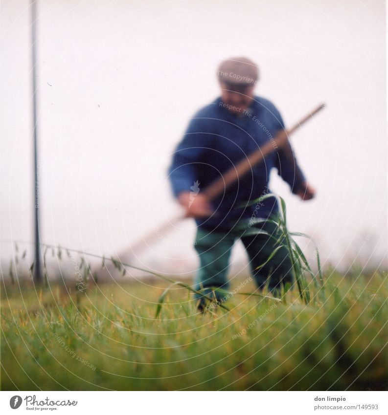 landarbeit Sense mähen Gras Halm Futter Feldarbeit Börde grün Mann Senior Handwerk Bewegungsunschärfe Mittelformat Rollfilm analog Amerika Handarbeit