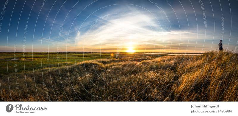 am ende Lifestyle Stil maskulin Junger Mann Jugendliche Erwachsene 1 Mensch 18-30 Jahre Umwelt Natur Landschaft genießen Sonnenuntergang Ferne frei Erholung