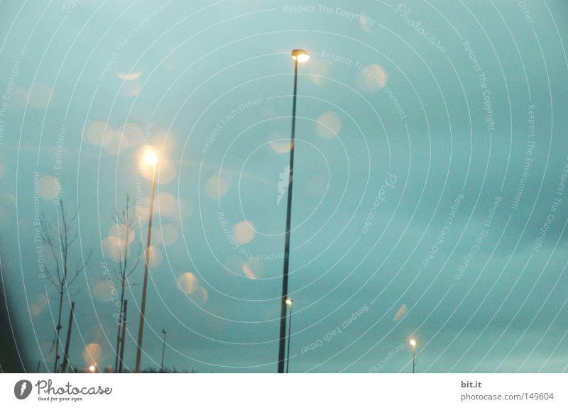 LICHT VON HIER NACH ALMOLAND Himmel blau Baum Wolken Winter kalt Herbst Umwelt Traurigkeit Stimmung Lampe rosa Klima Energiewirtschaft Technik & Technologie