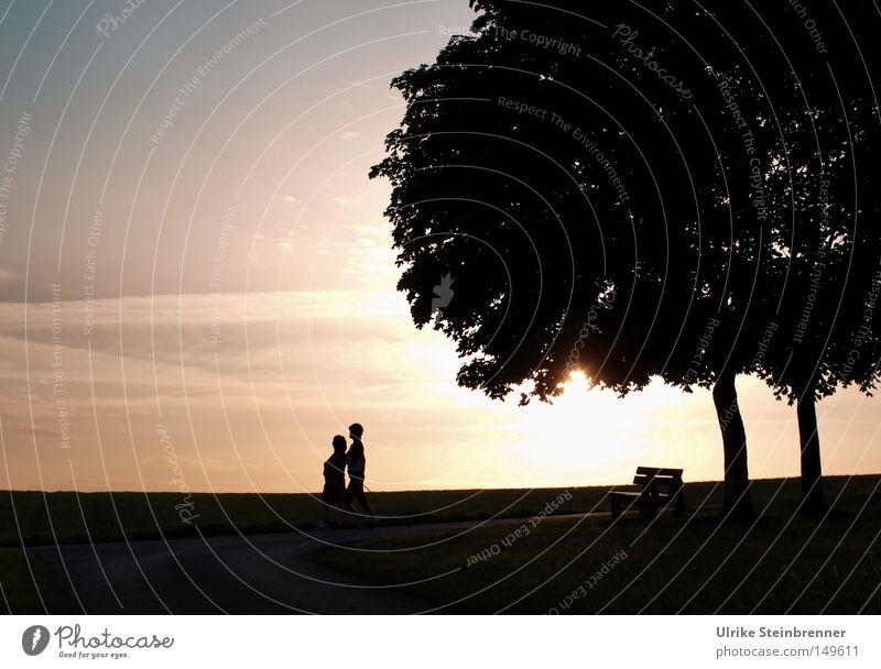 Spätsport Mensch Natur Baum Erwachsene Leben Bewegung Paar 2 Zusammensein Zufriedenheit Freizeit & Hobby laufen wandern paarweise Bank Körperhaltung