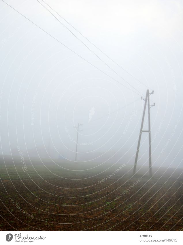 A im Nebel Morgen November Stimmung Telefonmast Kabel Feld Herbst