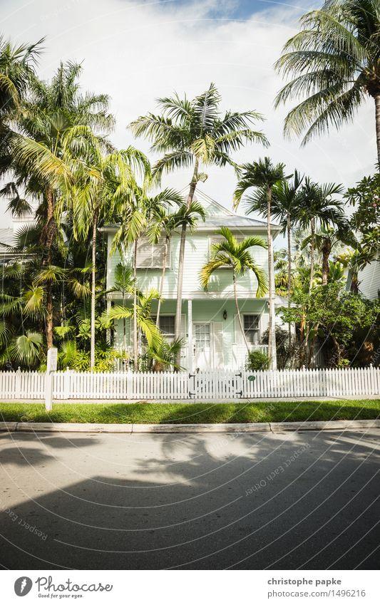 Nettes Häuschen Natur Sommer Schönes Wetter Baum Palme Wiese Key West Florida USA Haus Einfamilienhaus Traumhaus Bauwerk Gebäude Fassade exotisch