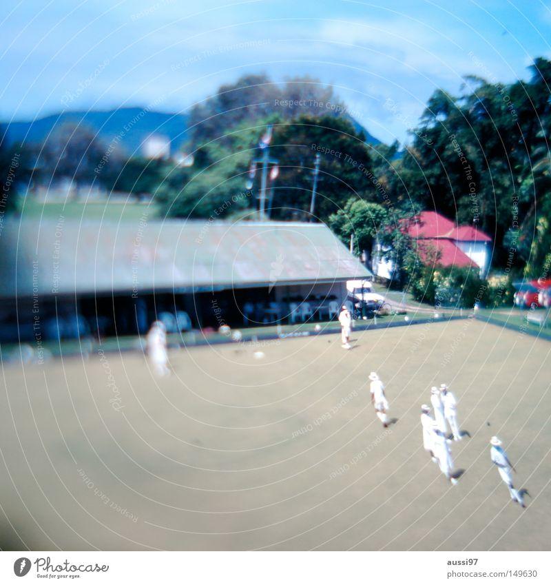 Bowling green Englisch Kegeln Ballsport Englische Sportart Nachmittagstee english tea Teetrinken englischer Rasen Unschärfe Neigung