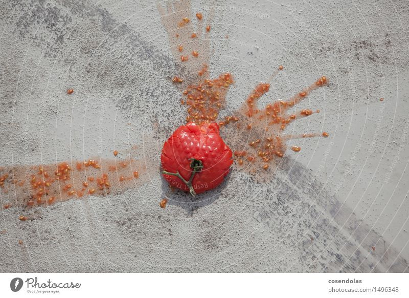 Tomate rot grau Lebensmittel Gemüse Asphalt trashig Missgeschick Reifenspuren überschüssig wegwerfen matschig