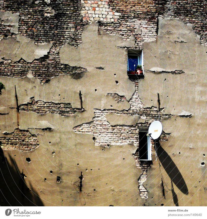fenster zur welt Brandmauer Berlin Satellitenantenne Antenne Blick Aussicht Altbau Loch abblättern Verfall Fernsehen Mauer Putz eng Stadthaus schäbig Innenhof