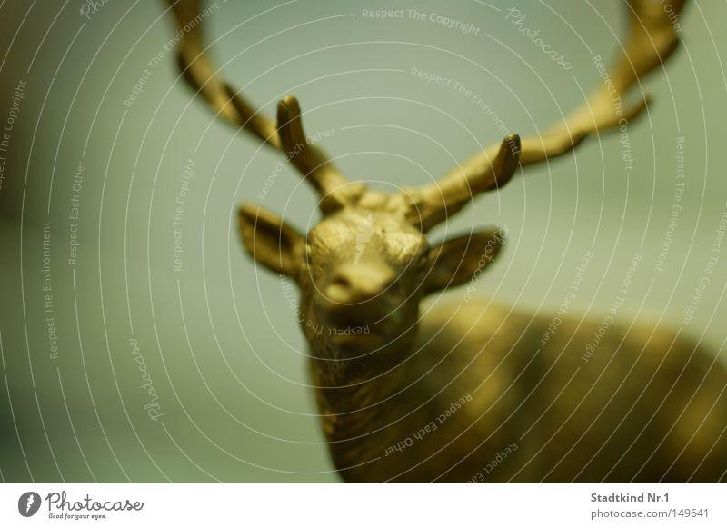 golden reindeer Rentier Gold Horn Nüstern Ohr gespitzt Auge Schnauze Kopf frontal unklar Unschärfe bewegungslos Figur Dekoration & Verzierung Säugetier