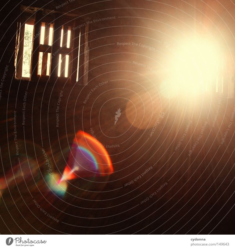 Heller Keller alt Sonne Einsamkeit Farbe Wand Gefühle Fenster Gebäude Raum Beleuchtung Hintergrundbild geschlossen kaputt Spuren Vergänglichkeit geheimnisvoll