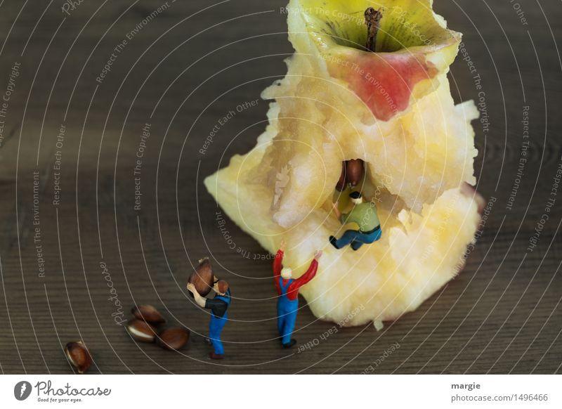 Miniwelten - Apfel (Kern) Ernte Mensch Mann rot Erwachsene Essen Gesundheit Lebensmittel braun Arbeit & Erwerbstätigkeit Frucht maskulin Ernährung Team