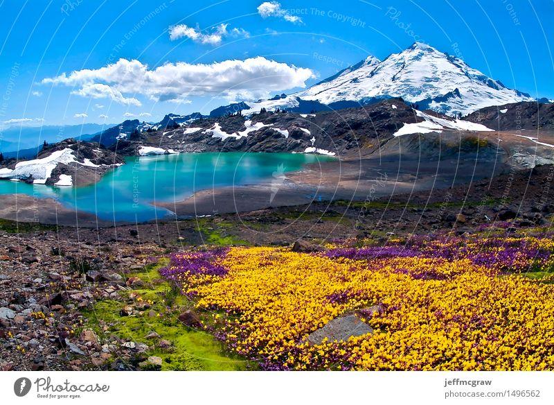 Himmel Natur Pflanze blau schön Sommer Wasser weiß Sonne Blume Landschaft Wolken Berge u. Gebirge Umwelt gelb Wiese