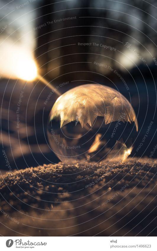 Winterzauber Seifenblase Natur Sonnenaufgang Sonnenuntergang Eis Frost Schnee kalt gelb gold rund gefroren frieren Kristalle Kugel ruhig faszinierend Experiment