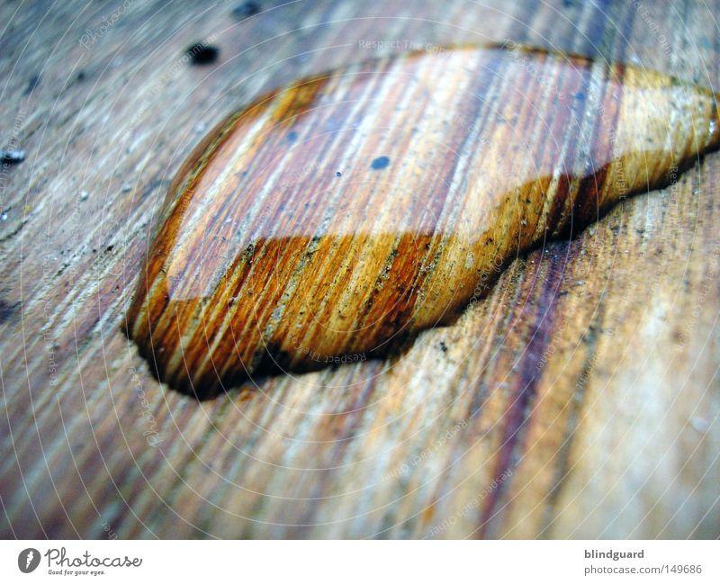 Wet Wood alt Farbe Wasser dunkel schwarz Umwelt Holz klein Lampe rosa Regen glänzend Wetter Glas Wassertropfen groß