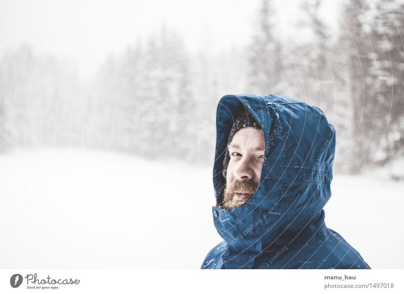 Allied with Nature Mensch Ferien & Urlaub & Reisen Mann ruhig Winter Wald kalt Erwachsene Schnee Schneefall maskulin Tourismus Freizeit & Hobby frisch frei