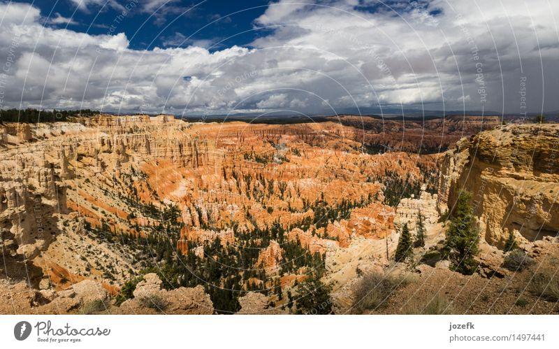 Inspirationspunkt Ferien & Urlaub & Reisen Tourismus Natur Landschaft Sommer Kiefer Schlucht Bryce Canyon wandern natürlich schön blau grün orange rot Farbfoto