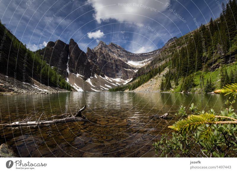 See Agnes Ferien & Urlaub & Reisen Tourismus Ausflug Abenteuer Sommer wandern Natur Landschaft Pflanze Wald Berge u. Gebirge Rocky Mountains Gipfel Gletscher
