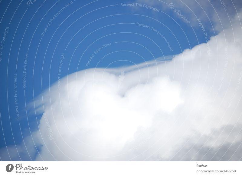 Verwehung Himmel weiß blau Winter ruhig Wolken kalt Schnee oben träumen Stimmung Wetter Umwelt fliegen frei Fröhlichkeit