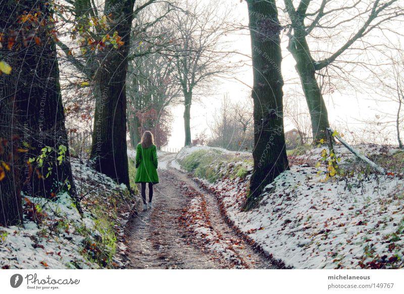 bleib doch noch grün Mantel Baum Schnee Wege & Pfade Straße Himmel Ferne blond schön ästhetisch Spuren kalt grau Fleck Wald Blatt Abschied 4 Paradies Winter