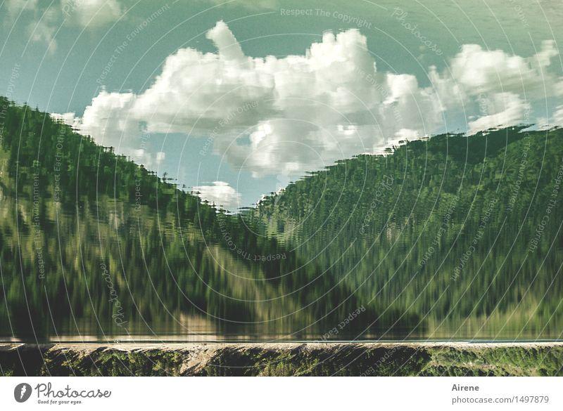 comic | blubb blubb Natur Landschaft Wasser Himmel Wolken Wald Hügel Alpen Berge u. Gebirge Seeufer Stausee Gebirgssee Zisterne Bayern nass verrückt blau grün