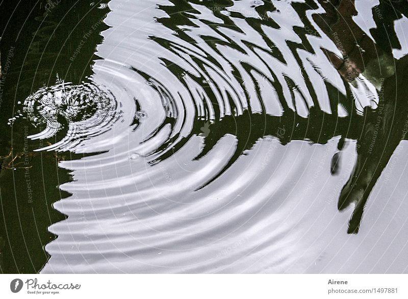 Treffer Urelemente Wasser Wassertropfen schlechtes Wetter Zeichen Ornament Pfeil Tropfen Kreis Wellen Wellenform Wellenlinie Flüssigkeit kalt nass rund schwarz