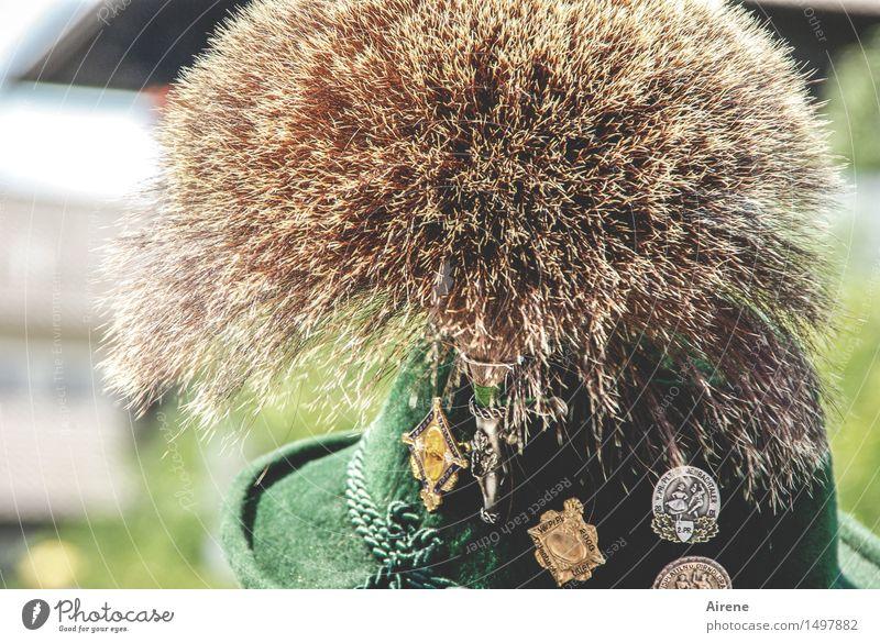 Kultobjekt Mensch Mann grün Erwachsene Feste & Feiern braun maskulin Kraft Bekleidung Alpen Hut Schmuck Jahrmarkt Bayern Stolz Oktoberfest