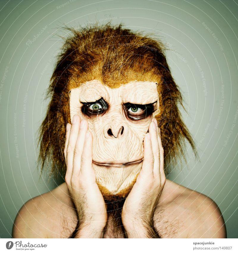 Ungeschminkt Trauer Entsetzen Affen Tier Maske Freude Traurigkeit verkleiden Schrecken Hand Innenaufnahme Mann Blick in die Kamera Irritation