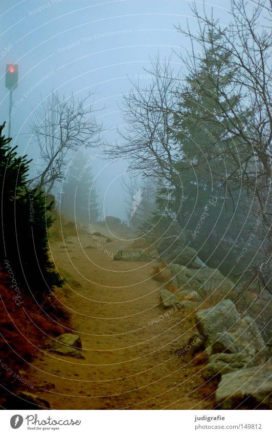 Dämmerung senkte sich von oben Natur Baum Winter Farbe Wald kalt Herbst Berge u. Gebirge Stein Wege & Pfade wandern Nebel Umwelt Zeichen Fußweg mystisch
