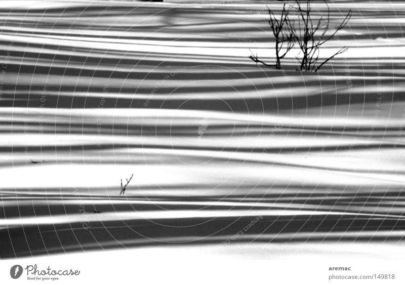 Schattenspiel Schnee Winter kalt weiß schwarz abstrakt Landschaft Schwarzweißfoto
