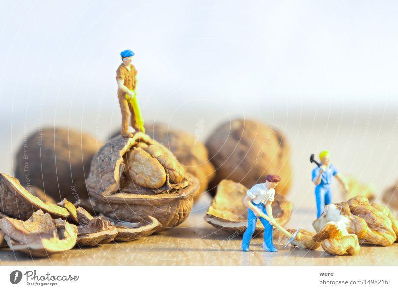 Nußknacker Natur Pflanze Essen Lebensmittel Arbeit & Erwerbstätigkeit Baustelle Teile u. Stücke Bauarbeiter Handwerker hart Nuss Arbeiter Miniatur Axt Paletten