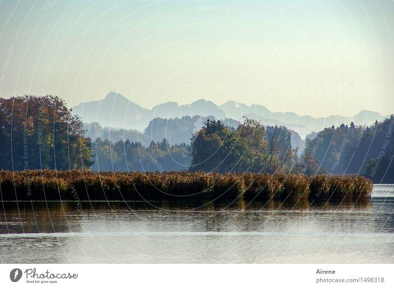 stiller See Himmel Ferien & Urlaub & Reisen blau Wasser Baum Landschaft Einsamkeit ruhig Berge u. Gebirge Herbst natürlich braun Horizont Zufriedenheit