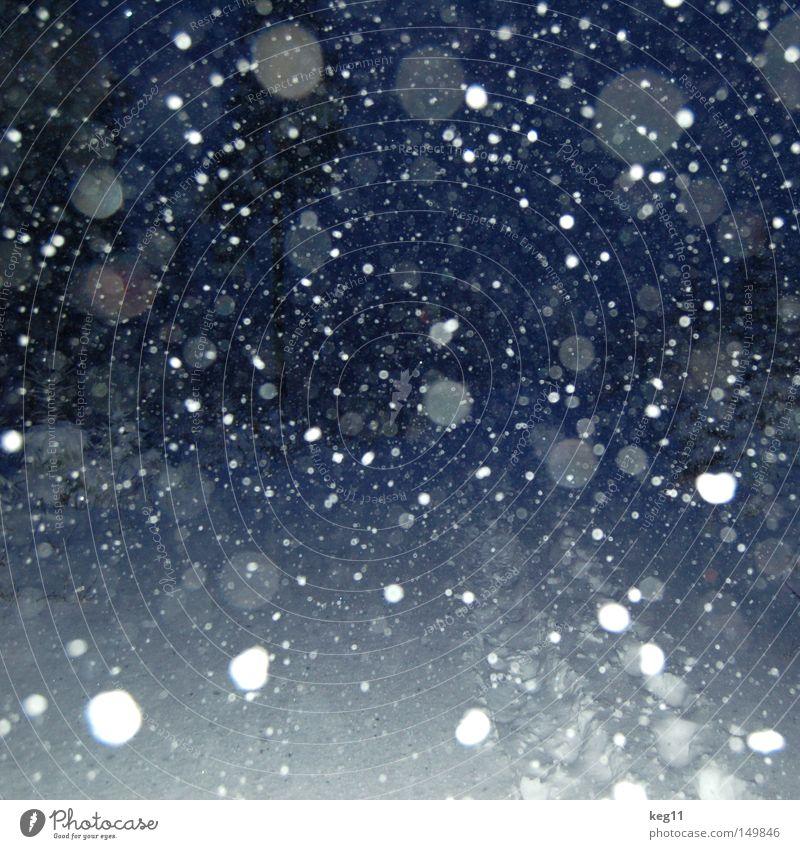 kurz vor knapp ... Nacht Schneeflocke Schneefall Flocke Kristallstrukturen Kristalle dunkel Wege & Pfade Winter weiß blau Ende Tag Baum kalt Himmel Stimmung