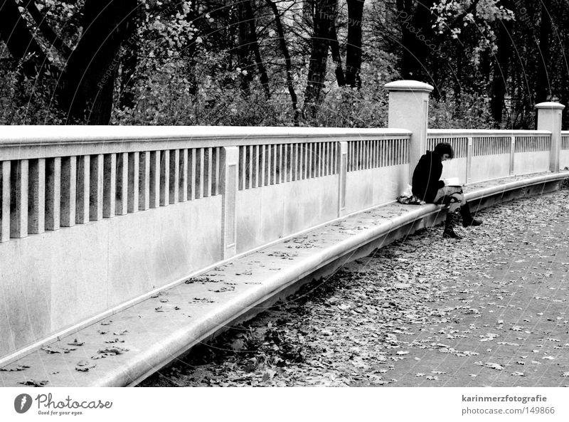 Auszeit nehmen Frau Baum Blatt Einsamkeit Wald Erholung Herbst kalt Gefühle Stein träumen Park sitzen Buch frisch Pause