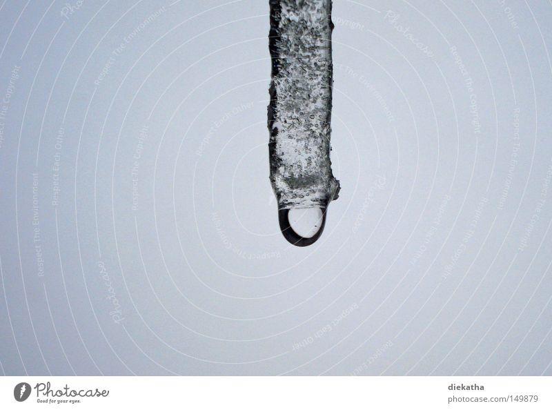 Gleich tropft's! Wasser weiß Winter kalt Schnee grau Eis Wassertropfen gefährlich Dach bedrohlich Klarheit Spitze gefroren frieren durchsichtig