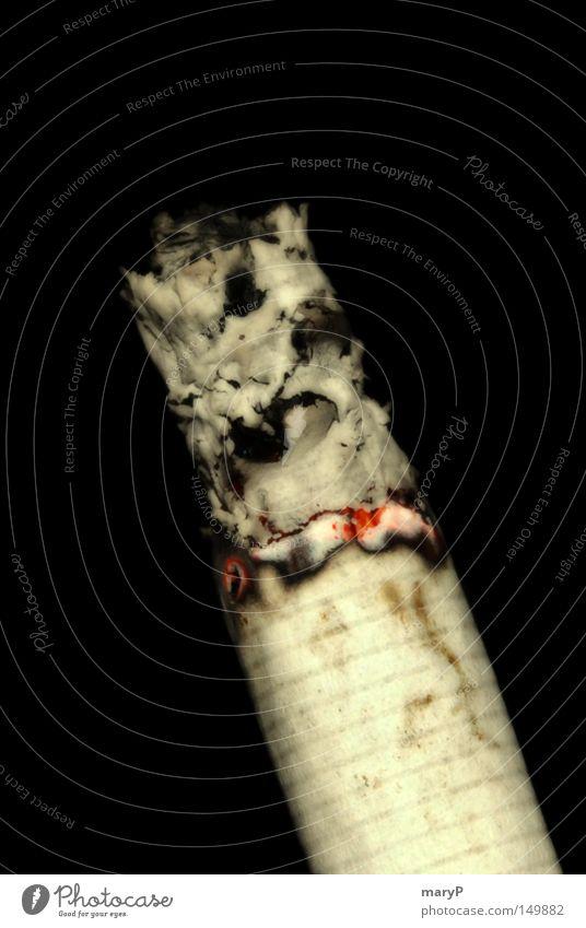 Sucht Zigarette Rauch Schwarzweißfoto Filterzigarette Glut Zigarettenasche Vor dunklem Hintergrund Freisteller Lungenerkrankung ungesund gesundheitsschädlich