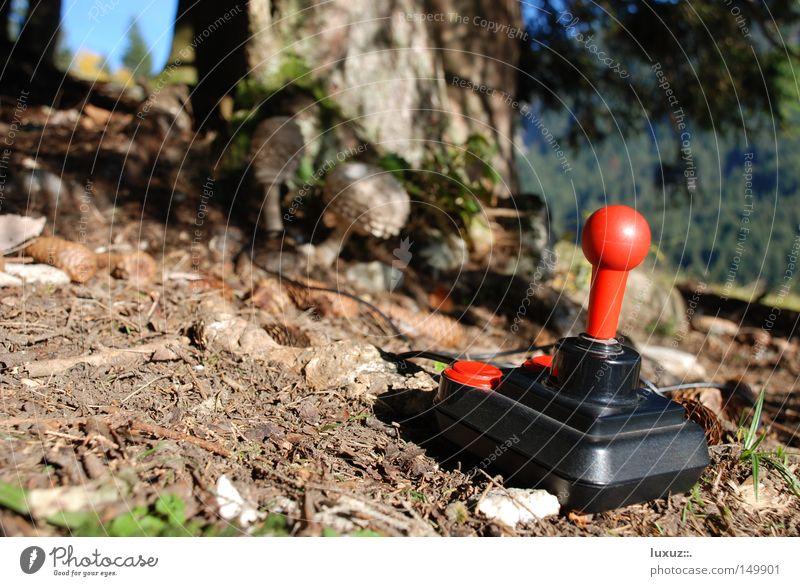 Champignon Natur Wald Spielen Umwelt Erfolg Klima Wissenschaften Kindheit Versuch Klimawandel forschen beste Meister cyber