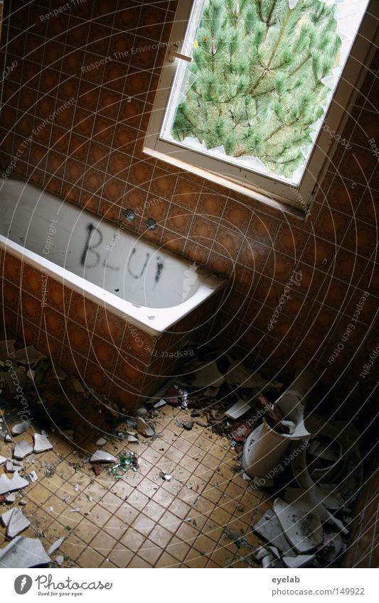 Badespass war gestern alt weiß Pflanze Haus Einsamkeit Fenster Garten Gebäude dreckig Wohnung Glas nass leer Bad Aussicht kaputt