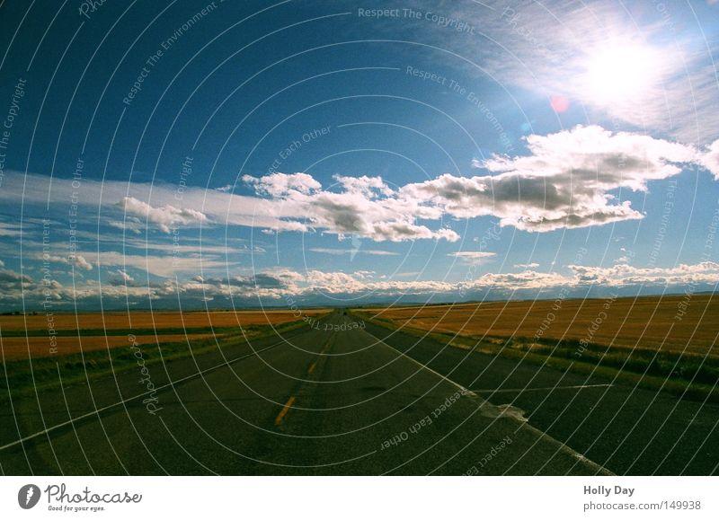 Der Sonne entgegen (98) Himmel Sonne blau Sommer schwarz Wolken Ferne Straße Wege & Pfade Wärme Feld frei Horizont Verkehr leer Perspektive