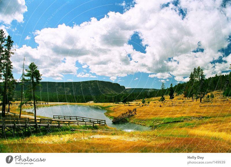 Heiße Farben (99) Ferien & Urlaub & Reisen Farbe Sommer Wasser Baum Wolken Wege & Pfade See Park Geländer Schwimmbad USA heiß Steg Geruch Amerika