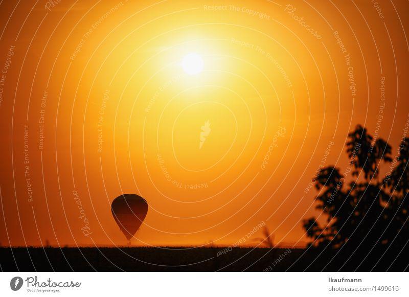 Heissluftballon im Sonnenuntergang Abenteuer Ferne Freiheit Luftverkehr Himmel Horizont Sonnenaufgang Klima Schönes Wetter Dürre Fluggerät Ballone fahren