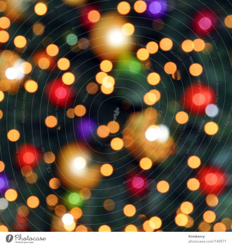 oh tannenbaum Weihnachten & Advent Farbe Hintergrundbild Stimmung hell glänzend Dekoration & Verzierung Kerze Silvester u. Neujahr Tanne Feiertag Lichterkette