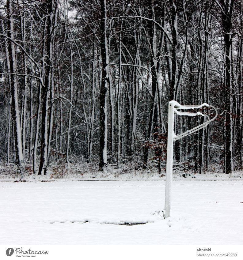 Winterpause!? Baum Winter Wald Schnee Spielen Eis Fußball Tor Ablehnung
