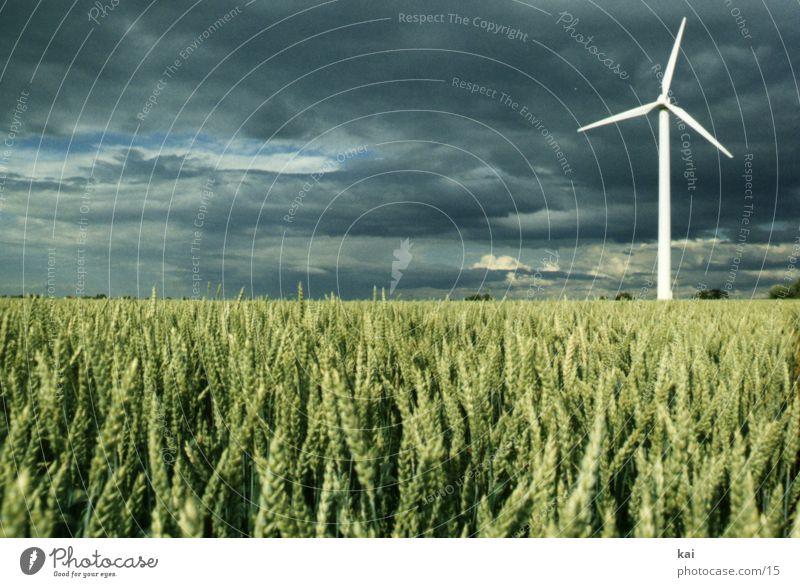 Windrad02 Natur Himmel Wolken Ferne Feld Getreide Windkraftanlage Landwirtschaft Ähren Getreidefeld