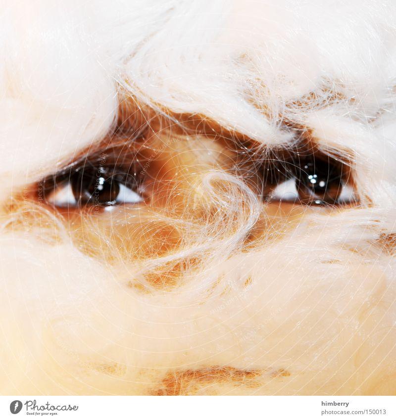 santacase Weihnachtsmann Weihnachten & Advent Bart Auge Fälschung Haare & Frisuren Blick Erzählung Geschichtsbuch Tradition Maske Karnevalskostüm