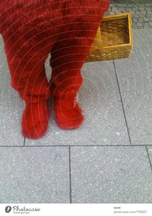 Erdbär Mensch rot Straße lustig Beine Fuß Tierfuß weich Fell Freundlichkeit Beruf Karneval Fußweg Werbung Anzug Korb